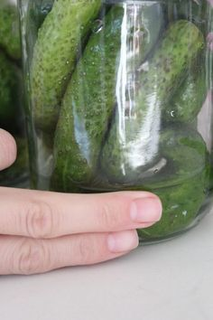 Pickled cucumbers are great to serve next to a steak, a stew or in burgers. Learn how to pickle cucumbers at home with this very easy, family recipe. Vinegar Cucumbers, Pickling Cucumbers, Vodka Potato, Vodka Mixes, Pickle Vodka, Garlic Infused Olive Oil, Post Workout Drink, How To Make Pickles, Fun Easy Recipes