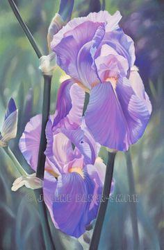 Iris Flower Art Purple Iris Painting by ArtByJulene on Etsy