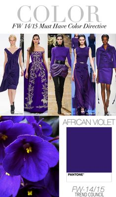 TREND COUNCIL FALL/WINTER 2014- AFRICAN VIOLET
