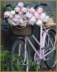 So beautiful! Peonies remind me of my childhood. So beautiful! Peonies remind me of my childhood. Pretty In Pink, Beautiful Flowers, Exotic Flowers, Purple Flowers, Deco Champetre, Bike Photography, Bicycle Art, Bicycle Shop, Bicycle Design