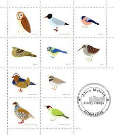 alice melvin birds - Google Search