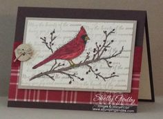 Just had to try an idea I had with the Stampin' Up! Beauty of the Season card before it retires. The idea turned out so pretty, I just had to share it with you! Watch to see my Beauty of the Season...