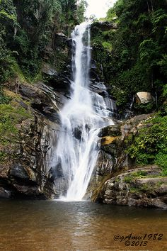 Parque Nacional Henri Pittier, Venezuela / waterfall in National Park (Henri Pittier). Venezuela