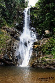 Parque Nacional Henri Pittier, Venezuela / waterfall in National Park (Henri Pittier). Venezuela