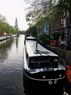 Your ultimate guide to cats in Amsterdam including cat cafes in Amsterdam, cat museum, coffeeshops with cats, & the best places to see cats in Amsterdam. Amsterdam Itinerary, Amsterdam Travel, Amsterdam Winter, Cool Places To Visit, Great Places, Amsterdam Photography, Europe Travel Guide, Travel Guides, The Beautiful Country