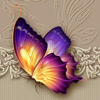 Moonbeams Flutter:The Butterfly Collection 3D Models moonbeam1212