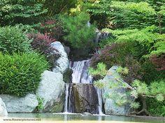 Missouri Botanical Garden. The waterfall at the Japanese garden.