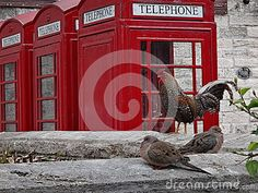 Red telephone box located at the Naval Royal Dockyard, Bermuda