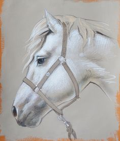 how to draw a friesian horse
