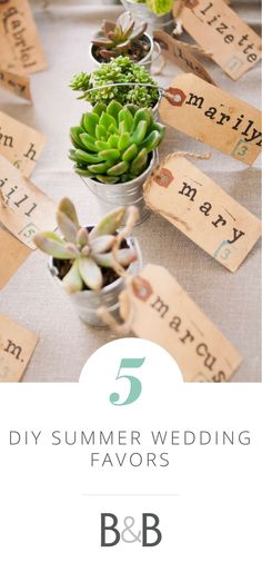 DIY Summer Wedding Favors, do-it-yourself, succulents, wedding ideas, gifts // Brinton Studios