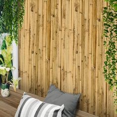 Sol Royal Premium Reed Privacy Screen SolVision Reed Screening Fence for Balcony or as Wind and Sight Protection – Natural Reed Screening Fence as Privacy Screen Reed Screening, Bauhaus, Balcony Privacy, Natural Garden, Curtains, Nature, Outdoor, Home Decor, Environment