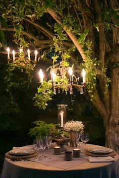 Okay it isn't a tree house, but dinner by a tree with a fairy tale feel is just as neat! Could do this under the willow