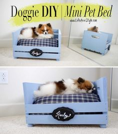 The cutest DIY pet bed ideas that are sure to make your favorite fur babies happy. See the best designs for 2020 and pick your favorite! Diy Pet, Diy Dog Bed, Pallet Crates, Pallets, Animal Projects, Pet Home, Dog Crate, Homemade Dog, Diy Stuffed Animals