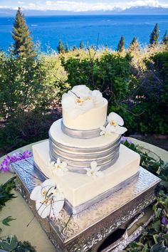 White Wedding Cakes Wedding Cakes: Winter wedding cake with silver and white flowers - Looking for the perfect wedding cake? Get inspired with pictures of our favorite wedding cakes! Whimsical Wedding Cakes, Wedding Cake Fresh Flowers, Elegant Wedding Cakes, Cool Wedding Cakes, Luxury Wedding Cake, Dream Wedding, Wedding Consultant, Lake Tahoe Weddings, Mr And Mrs Wedding