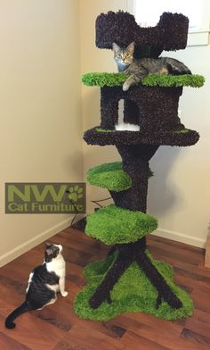 "Chris is raising funds for Ultimate Cat Tree House - NW Cat Furniture on Kickstarter! It's The Cat Tree We Made For Prank VS Prank's Cat ""Nylah""! Help Us Fund This Product By Making A Pledge To Reserve Your Own Cat Tree! Cool Cat Trees, Diy Cat Tree, Cat Playhouse, Cat Tree House, Cat Exercise, Animal Gato, Cat Towers, Cat Scratching Post, Cat Room"