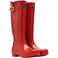 Joules Red Field Rain Boot ($50) ❤ liked on Polyvore featuring shoes, boots, knee-high boots, rubber sole boots, wellies boots, joules boots, slip on rubber boots and low heel boots