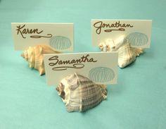 10 Seashell Card Holders - Beach Weddings, Beach Showers, Beach Dinners sea shells, place cards, dessert table cards