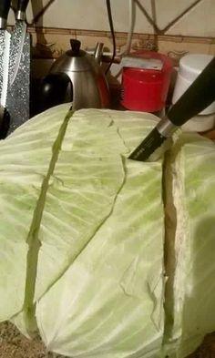 kalem gibi lahana sarmanın yolu (3)