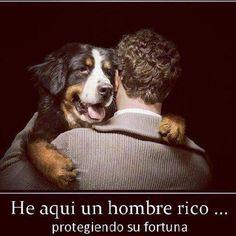 #perros #amigos #tesoros