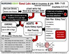 Nursing Labs, Med Surg Nursing, Nursing Student Tips, Nursing Board, Pharmacology Nursing, Nursing Notes, Nursing Students, Nursing Schools, Ob Nursing
