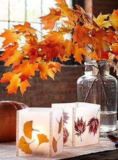 Make Leaf Lanterns with Wax Paper