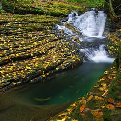 Five Hidden Outdoor Gems of Virginia // The Devil's Bathtub sounds ominous, doesn't it? It's located in Scott County and considered difficult to get to via the 7.2-mile  Devil's Fork Loop Trail. Plan to get your feet wet as you criss-cross the water and scramble over boulders. The Devil's Bathtub is a naturally smooth swimming hole, complete with a water slide rock.