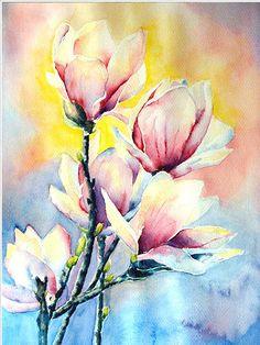 magnolie 2  Monika Płóciennik