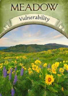 Meadow - Vulnerability from Earth Magic Oracle by Steven D. Farmer. Open up and let someone new in today. Taking the risk of being vulnerable doesn't necessarily mean that you will be hurt. It can mean that you garner new experiences that enrich, open, and enliven your life. Take that risk today! #EarthMagic #Vulnerability #Risk #newexperiences
