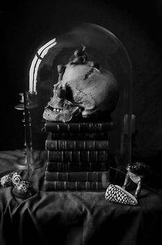 dark skull vampire goth gothic sceleton