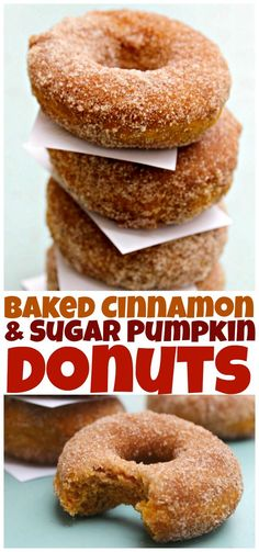 Cinnamon & Sugar Pumpkin Donuts -Baked Cinnamon & Sugar Pumpkin Donuts - Baked Pumpkin Donuts recipe - a great way to use up that canned pumpkin puree! These Baked Pumpkin Spice Donuts, topped with cinnamon-sugar, are the ultimate easy fall dessert! Baked Donut Recipes, Baked Doughnuts, Cinnamon Donuts, Donuts Donuts, Recipe Of Donuts, Baked Pumpkin Spice Donut Recipe, Pumkin Donuts, Best Donut Recipe, Baked Churros