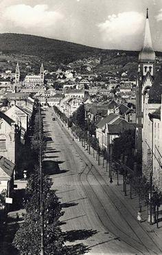 Utca, Old Pictures, Historical Photos, Budapest, Paris Skyline, Travel, Historical Pictures, Antique Photos, Viajes