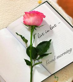 Latest 115 Good morning images for my love Good Morning Love Pics, Good Morning Flowers, Good Morning Wishes, Good Morning Images, Good Morning Quotes, Morning Pics, Morning Sweetheart, Jesus E Maria, Book Flowers