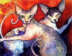 Sphynx cats watercolor painting