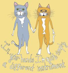 v-day gift .... for the cat lover and the of montreal fan