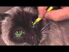 In this http://ArtistsNetwork.tv video, Mark Menendez shows you how to use four colored pencils to create beautiful, realistic color and shine when you paint a cat's eyes in colored pencil.