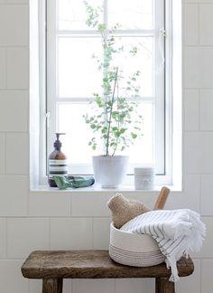 White tile wall + windowsill plant   classic, simple bathroom