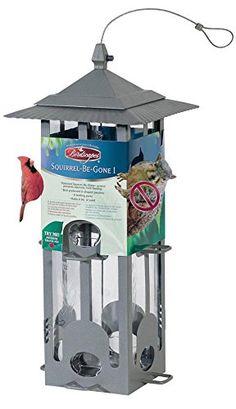 Birdscapes 350 Squirrel-Be-Gone Wild Bird Feeder For Sale https://birdhousesforoutside.info/birdscapes-350-squirrel-be-gone-wild-bird-feeder-for-sale/