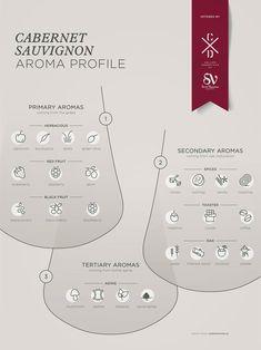 Cabernet Sauvignon grape variety wine aroma profile flavors fruit spices Social Vignerons #Wine #Winetasting #Wineeducation