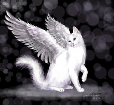 Her fascination didn�t start until another beloved cat passed, and her mother explained that it was probably an angel now. Description from art-fromthe-heart.deviantart.com. I searched for this on bing.com/images