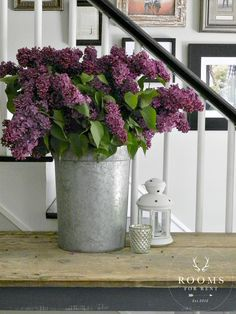 lilacs in metal buck