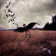 Giving My Wings Back by Boy_Wonder, via Flickr, joel robison photography