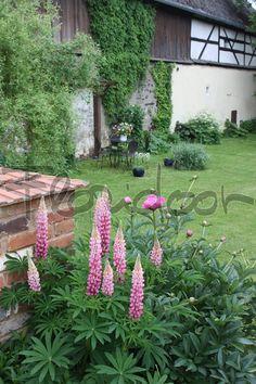 Venkovská zahrada francouzského stylu | Floridoor