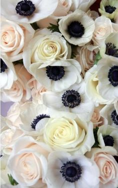 Perfect floral colors combo...black, white, and light peach