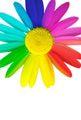 Ideas para casarse en primavera: Elige una paleta de colores primaverales