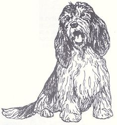 "Dog Rubber Stamp - Petit Basset Griffon Vendeen-1F (Size: 2-1/4"" Wide X 2-1/4"" Tall) by DogStampsPlus.com, http://www.amazon.com/dp/B000M0PY68/ref=cm_sw_r_pi_dp_zKULrb08WSBES"