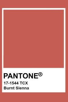 Pantone Tcx, Pantone Swatches, Color Swatches, Pantone Colour Palettes, Pantone Color, Colour Pallette, Colour Schemes, Pantone Orange, Colour Board