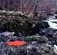 Goldsworthy_Andy-Red_Pool_Scaur_River_Dumfriesshire.jpg (589×574)