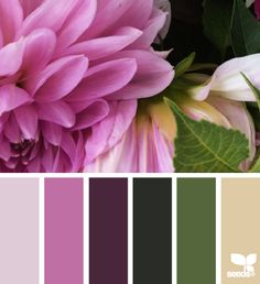 Lilac, purple, green and beige
