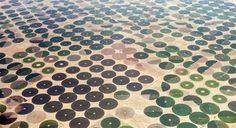L'Arabie Saoudite exploite massivement ses ressources souterraines en eau, pour développer une agriculture inadaptée à l'origine d'un formidable gâchis. L'épuisement rapide de ses aquifères risque d'entraîner une sécheresse majeure dans le pays dans les prochaines années, avertit un ancien mlinistre de l'Agriculture saoudien... http://www.notre-planete.info/actualites/4429-ressources-eau-Arabie-Saoudite-crise