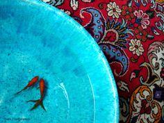 Fish most dominant motif of Persian rugs , symbol of Anahita Goddess